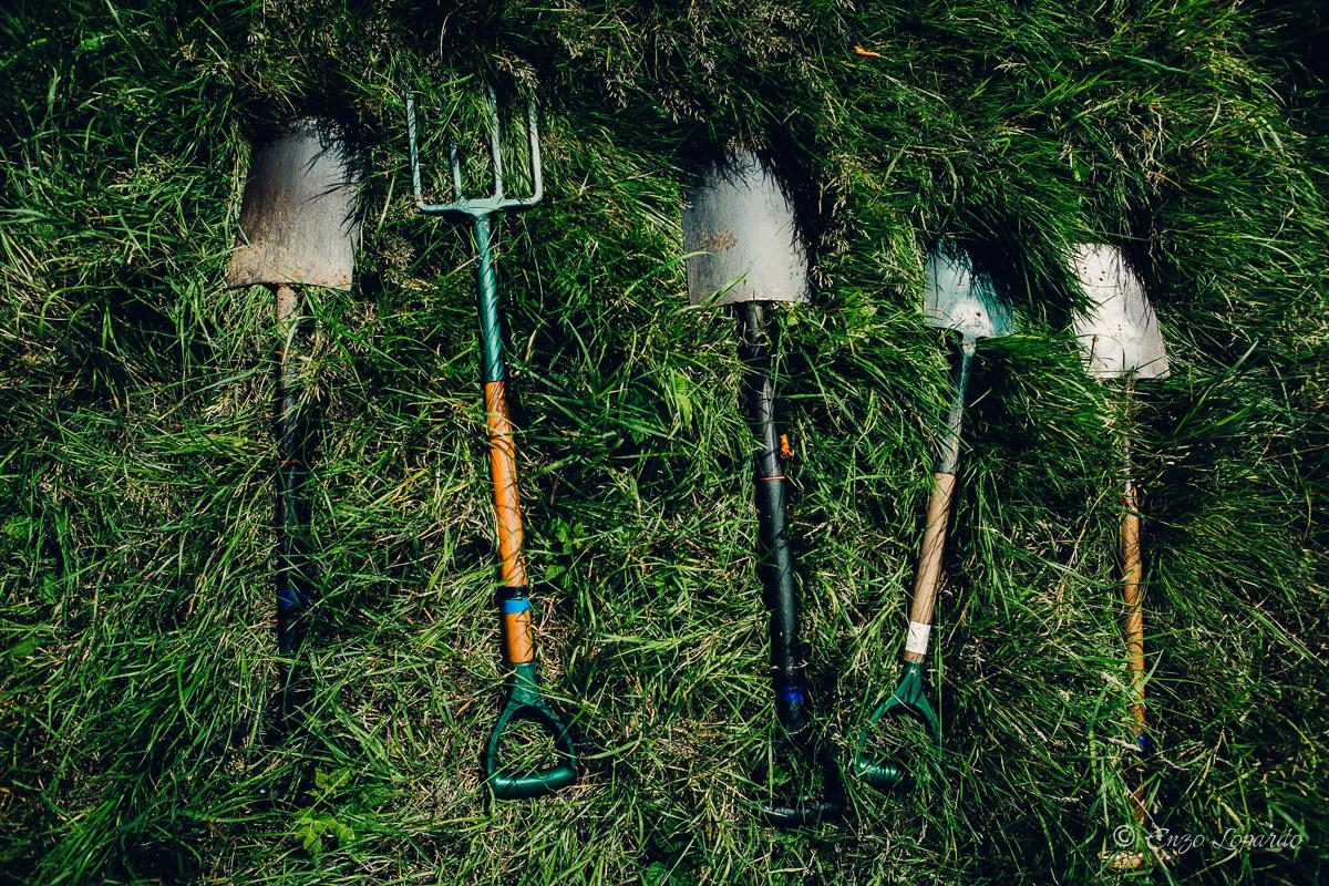 BMW_sozial_gardening_5